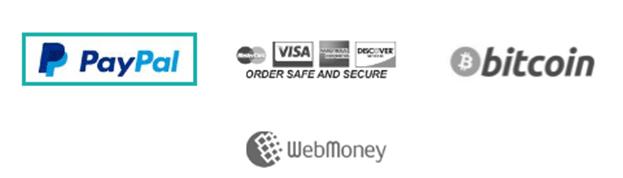 FrootVPN Payment methods