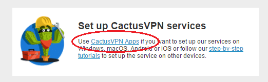 Cactus VPN set up