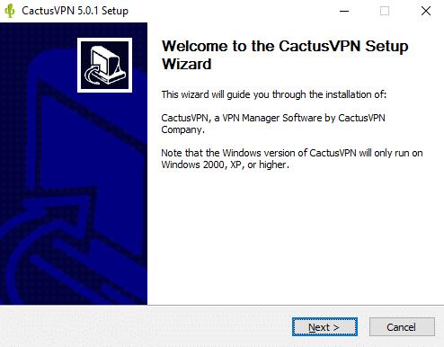 Cactus VPN setup