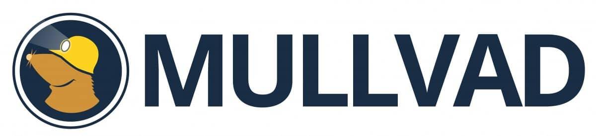 MullVad Logo